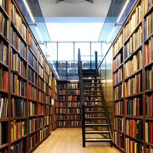 Библиотеки Александрова Гая